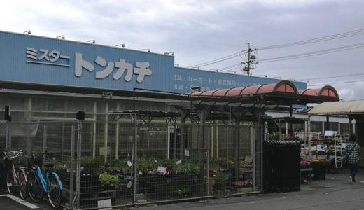桑名市のホームセンターミスタートンカチ江場店にある「タコネーズ」とは…